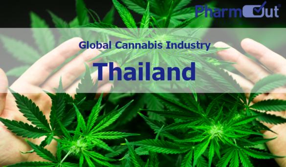 thailand-legalises-cannabis-south-asia